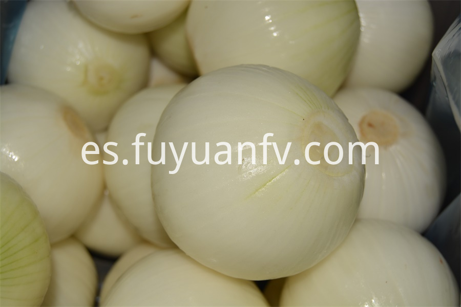 Yellow Peeled Onion